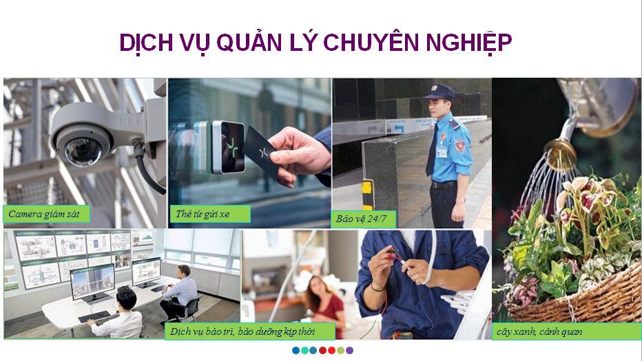 quan-ly-chuyen-nghiep-chung-cu-6th-element